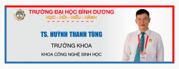08-01 huynh thanh tungAsset 16