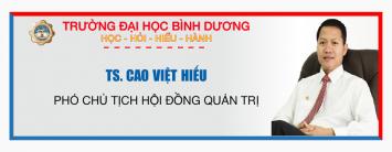 TS Cao Việt Hiếu Pho CT HĐQT